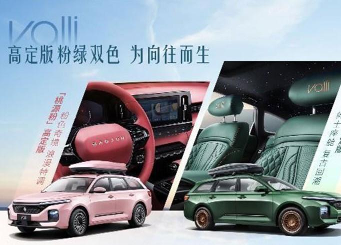 10月20日预订 Valli增桃源粉/竹海绿高定版车型